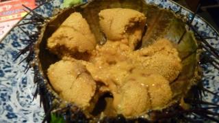世界「食べると気分がハイに」ウニの美味さに驚きの声