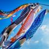 世界「こんなキレイな魚みたことない!」風にゆられる、こいのぼりの姿に世界を魅了!