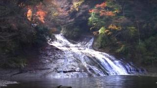 海外「ちょっと一息しませんか?」養老渓谷で四季を楽しむ!