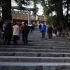 海外「一歩踏み入れれば、神の領域」伊勢神宮20年で建て替えも、素晴らしい景色
