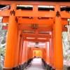 海外「一瞬で好きに!」伏見稲荷大社は何度も旅したい場所