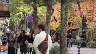 海外「映画のワンシーンみたい!」京都・木屋町の生活音を感じてみた
