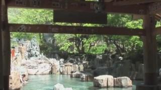 海外「雪の中の温泉が綺麗!」宝川温泉汪泉閣