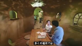 海外「内装のセンスが最高!」一風変わった猫カフェに興味津々