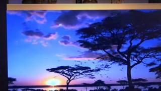 海外「すごく上品で驚いたよ!」日本が作った、透明LCDテレビが未来的と話題!