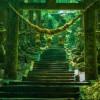 海外「こんな場所が実在するなんて!」神秘的な空間が広がる上色見熊野座神社が凄い!