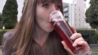 海外「フルーツビールが飲める店」東京で買えるベルギービールがいい!