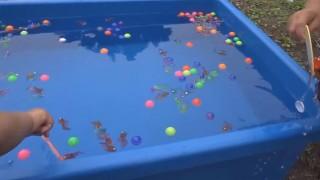 海外「子ども姿が可愛い!」金魚とスーパーボールすくいの楽しい遊び!