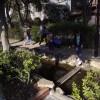 海外「日本らしいシステムだね!」小松川境川親水公園に驚き!