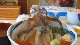 海外「日本人の変な食べ方!」イカ踊り食いが残酷と話題