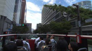 海外「疾走感がいい!」福岡のオープントップバスに感動