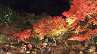 海外「寺院・庭園の紅葉が綺麗!」京都の秋の風景を満喫