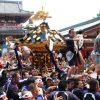 海外「神輿をぶつけひっぱいあう!」三社祭りが素敵すぎる