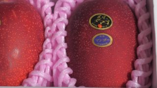 海外「農家と競りの日本文化」オークションで$5,000のマンゴーの秘密