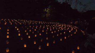 海外「神奈川 県立公園に灯る素敵な夜景」保土ヶ谷キャンドルナイトを散歩してみた