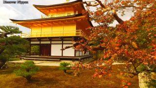海外「秋の観光名所をめぐる旅」京都の紅葉の名所をめぐってみた