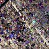 海外「青白の電飾が幻想的!」東京ガーデンテラス紀尾井町のイルミネーション