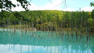 海外「美瑛 池の水面が青く見える」北海道の青い池と立枯れのカラマツの絶景